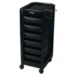 Star Black Salon Trolley